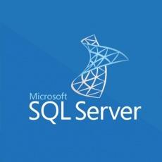 SQLSvrStd 2019 OLP NL Gov